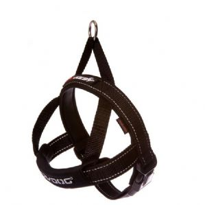 Ezydog Quick Fit Harness | 4 active dogs